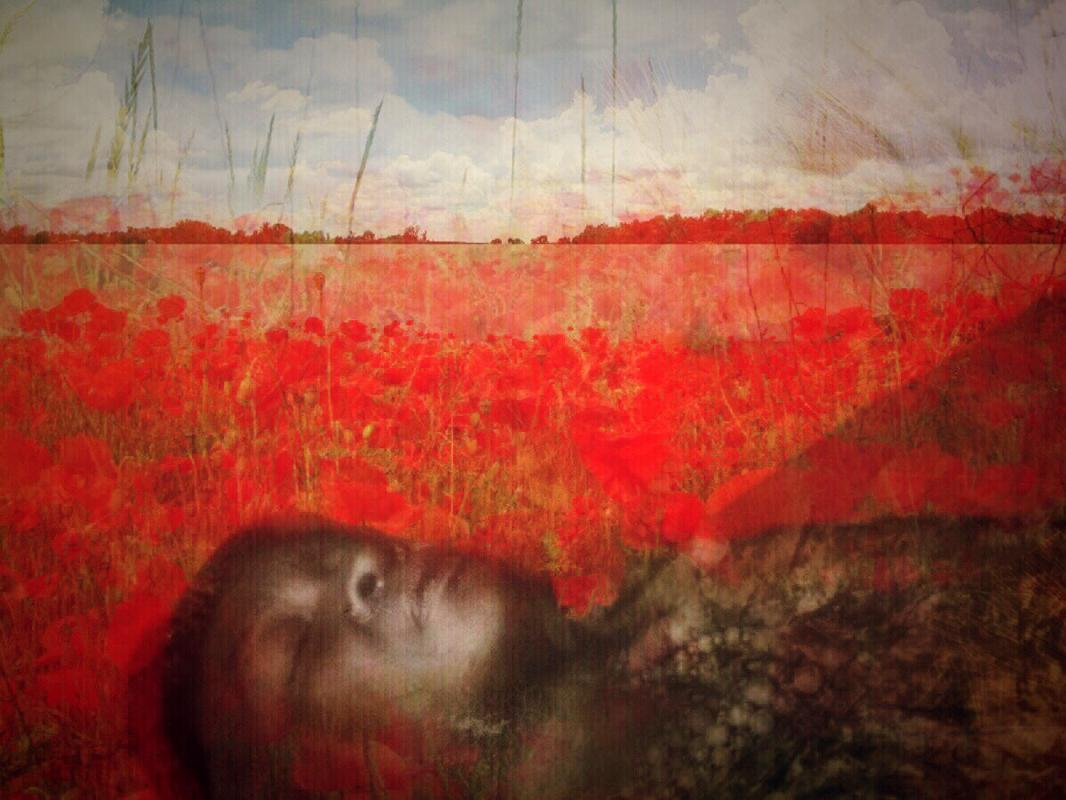 "Ryan Ostrowski: ""Sleeping in a Field of Poppies"""